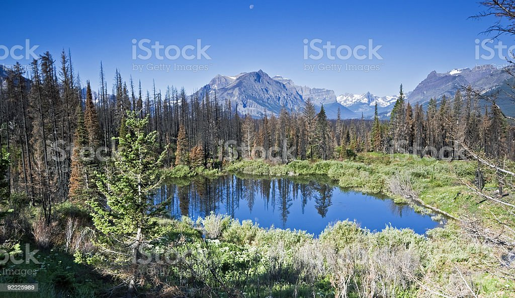Moon above Glacier National Park royalty-free stock photo