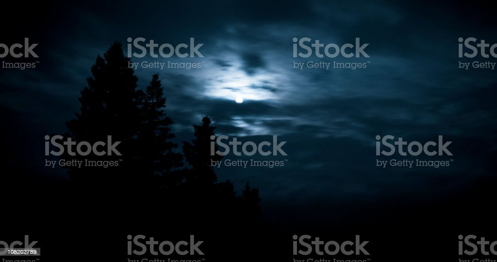 Moon and trees in the darkness. royalty-free stock photo