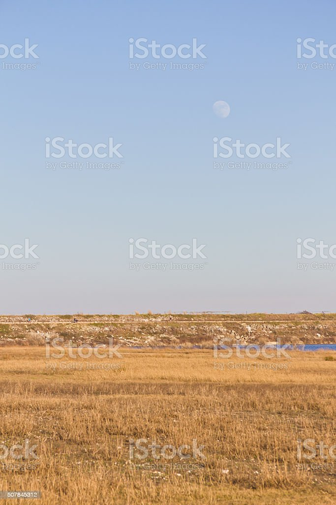 Moon at Brushy Creek Regional Trail stock photo