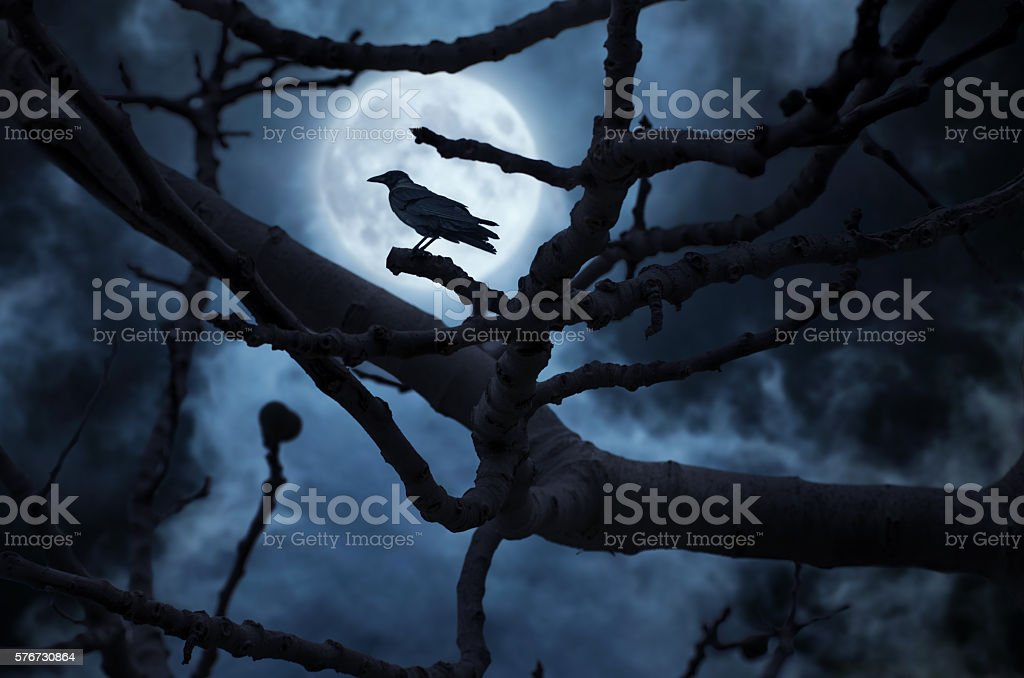 Moon behind the tree and a raven on it. stock photo