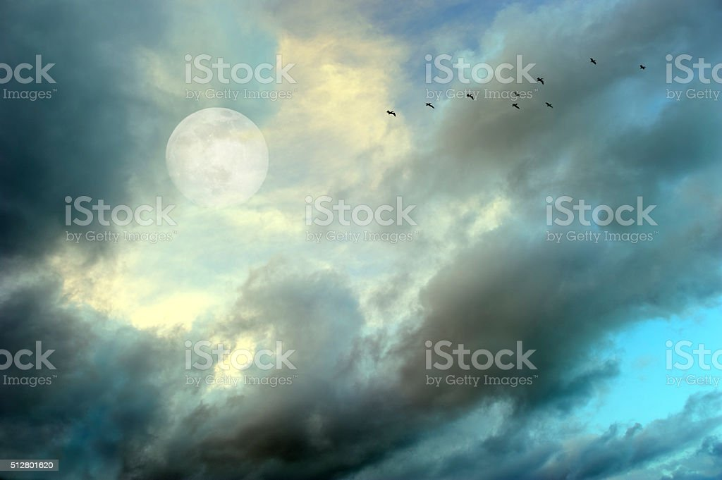 Moon Clouds Birds stock photo