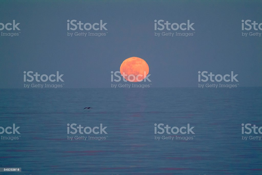 Moon over Sea of Cortez stock photo