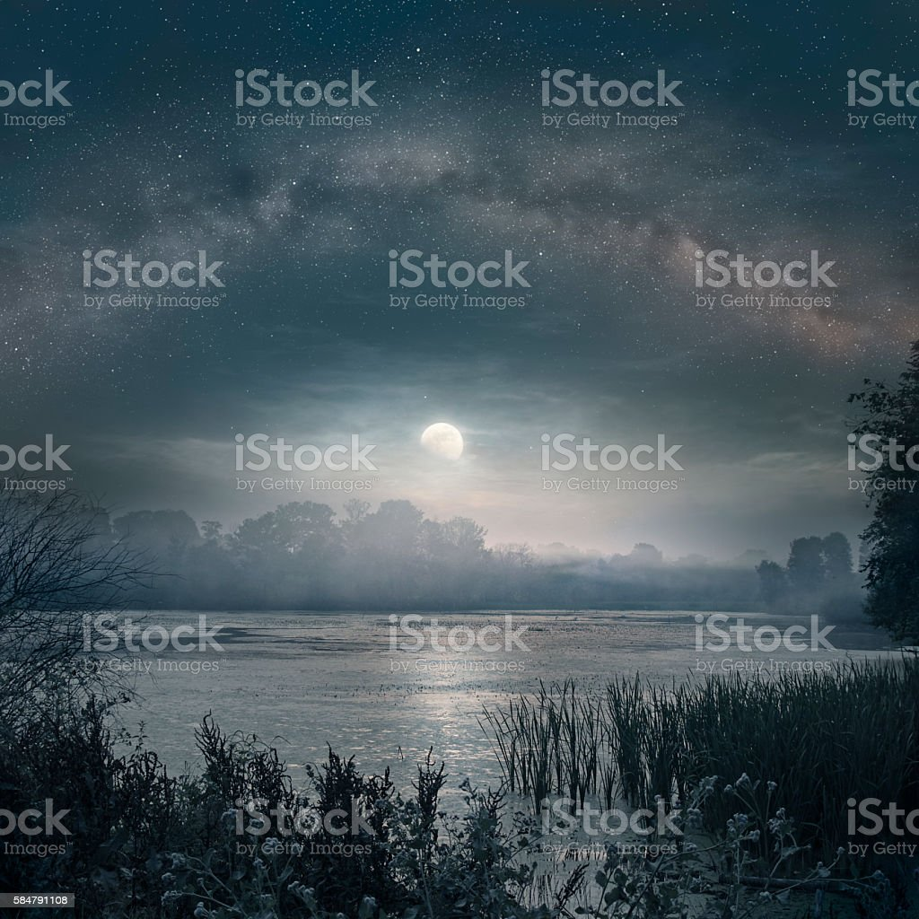 Moon over the pond stock photo