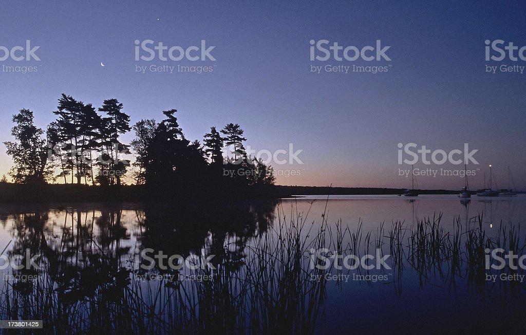 Moon, Reeds and Sailboats royalty-free stock photo