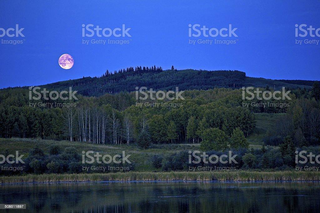 Moon Rising stock photo
