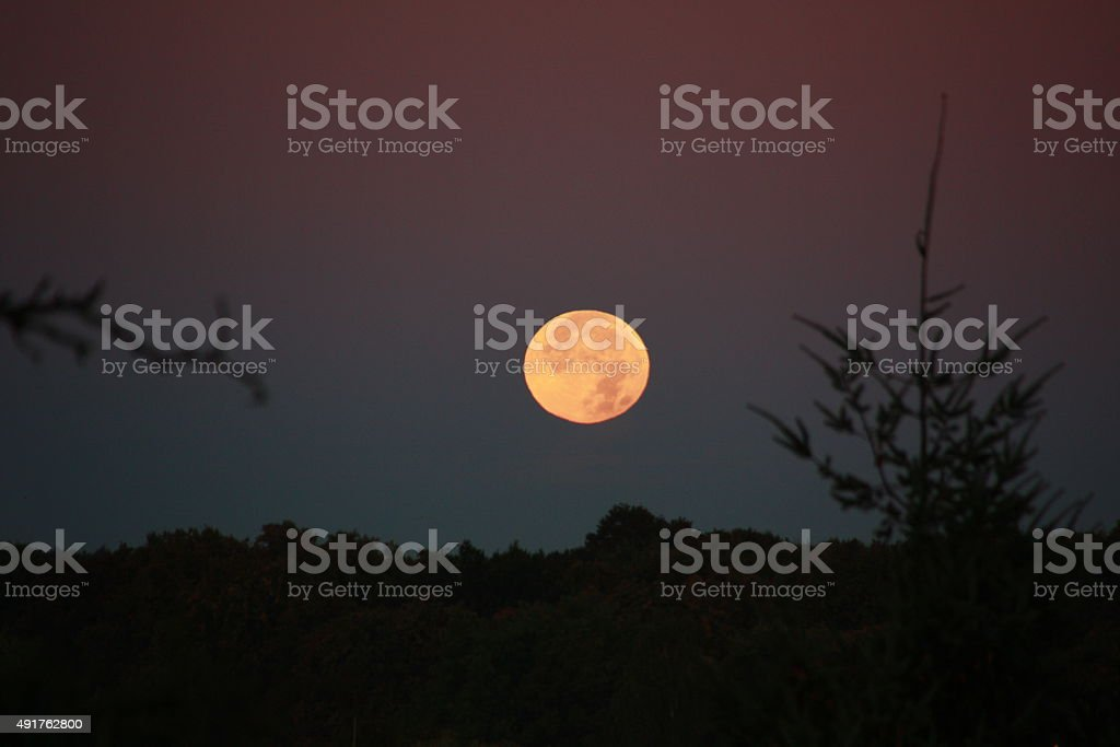 moon set of yellow full moon after total eclipse stock photo