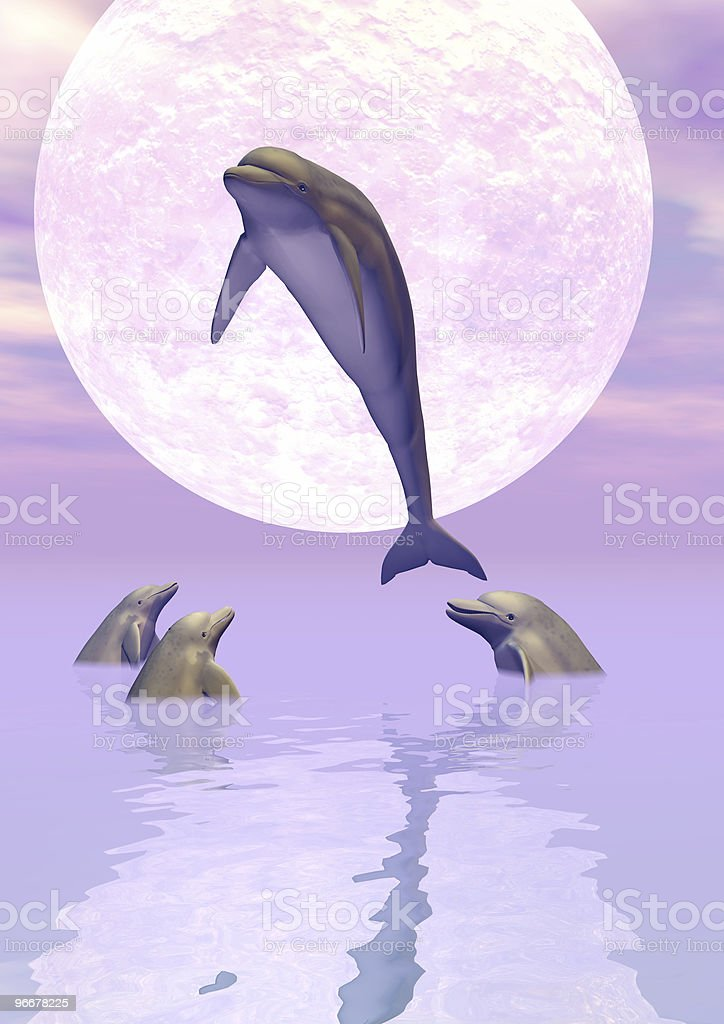 Moonlight Dolphins royalty-free stock photo