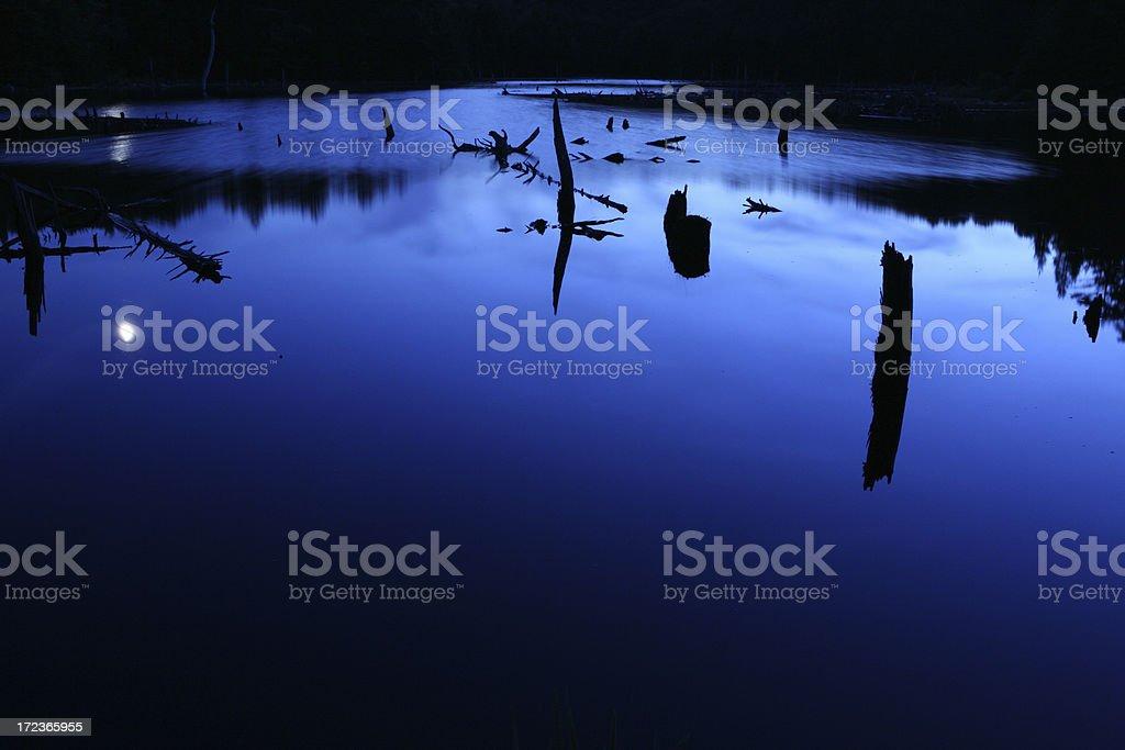 Moonlight on Beaver Pond stock photo