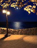 moonlight on the coast lantern