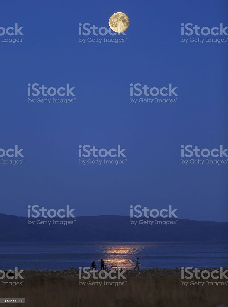Moonlight. stock photo