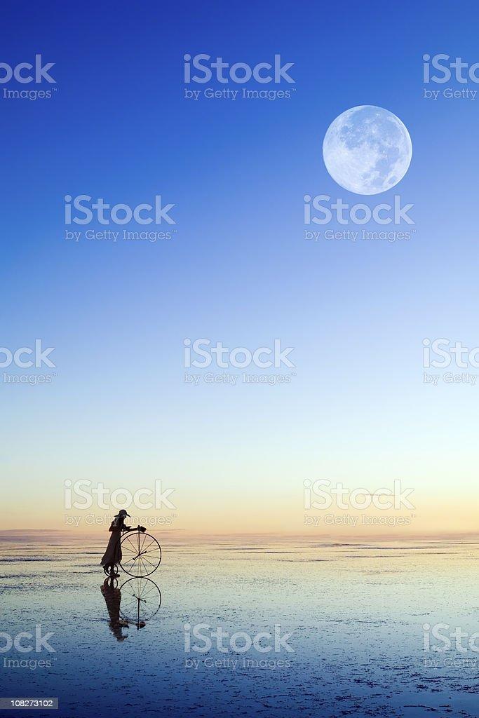 moonlight shadows stock photo