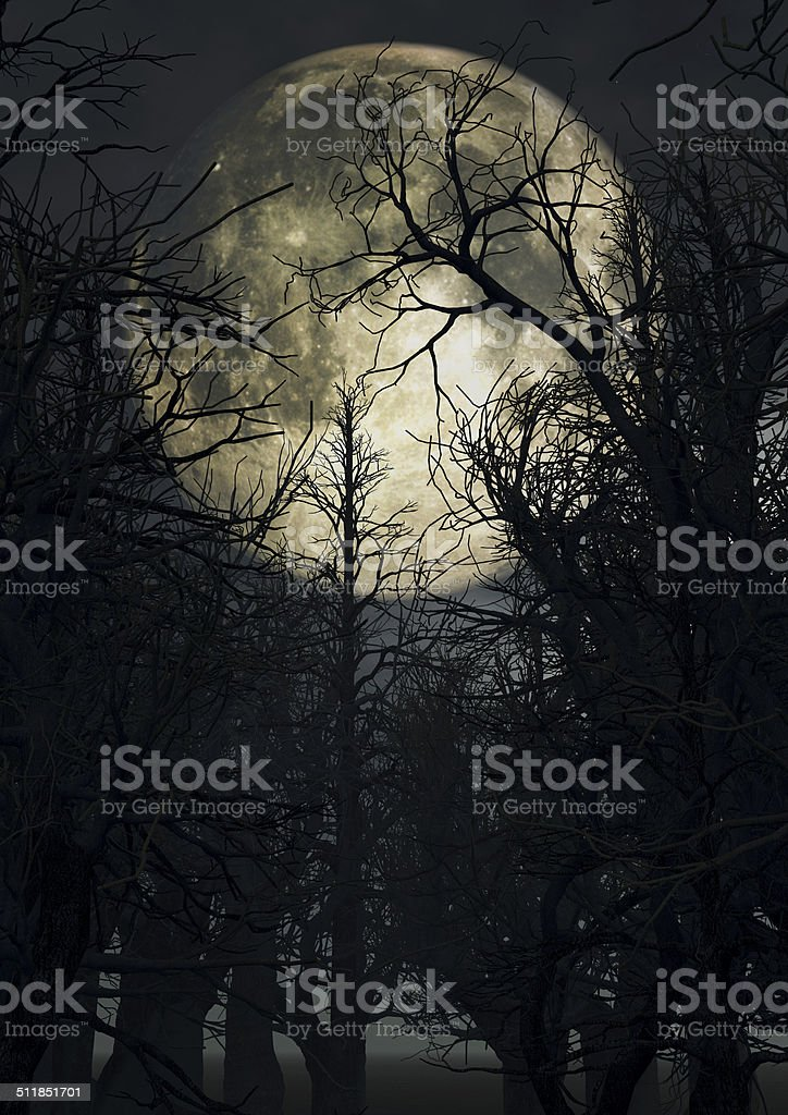 Moonlit sky with spooky trees stock photo