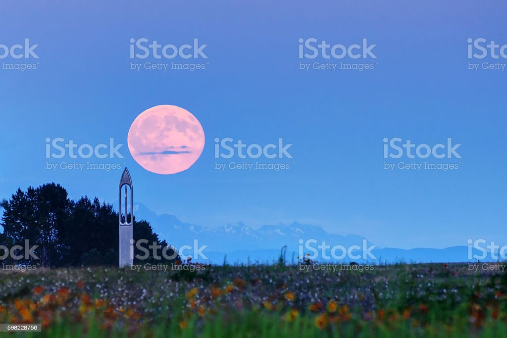 Moonrise in a park stock photo