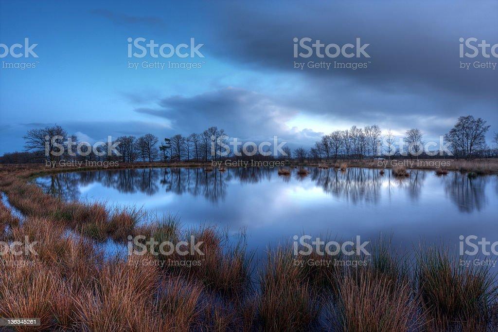 Moor just before sunrise stock photo
