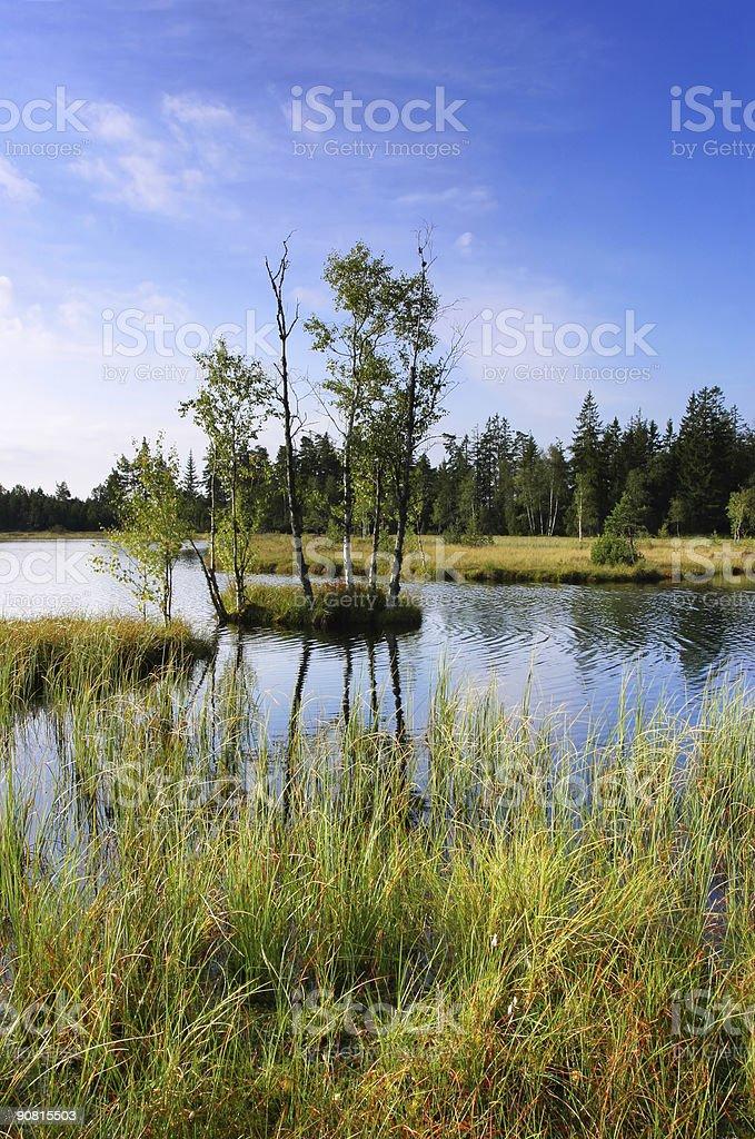moor lake royalty-free stock photo