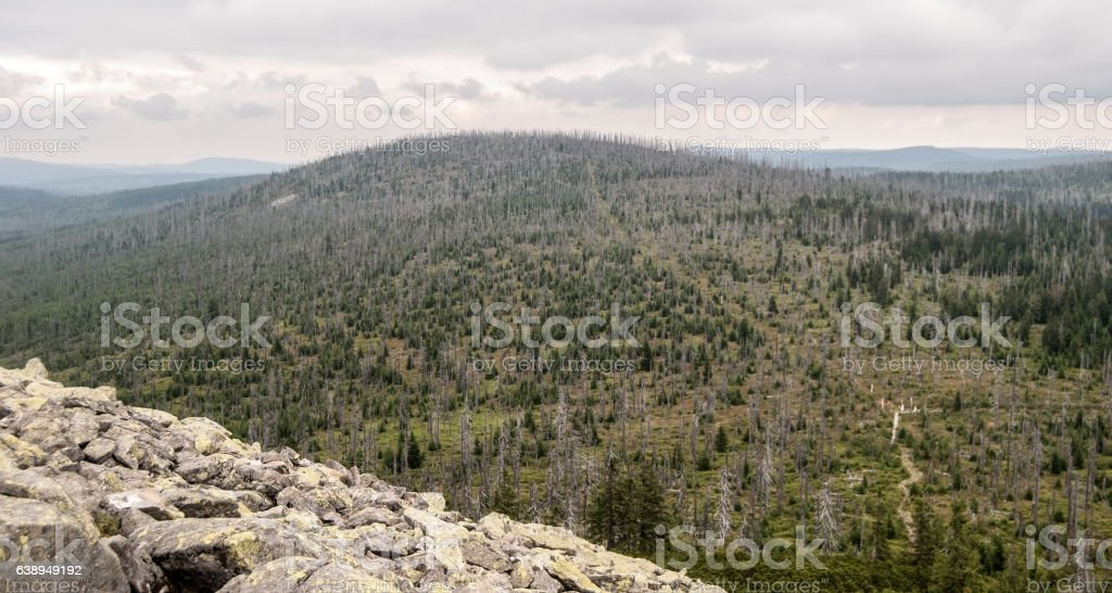 Moorberg hill from Lusen hill in Bavarian Forest mountains stock photo
