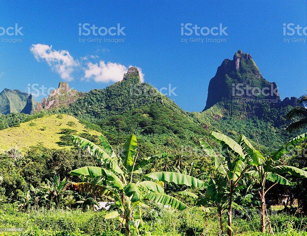 Moorea Tahiti scene with Hawaii style stock photo