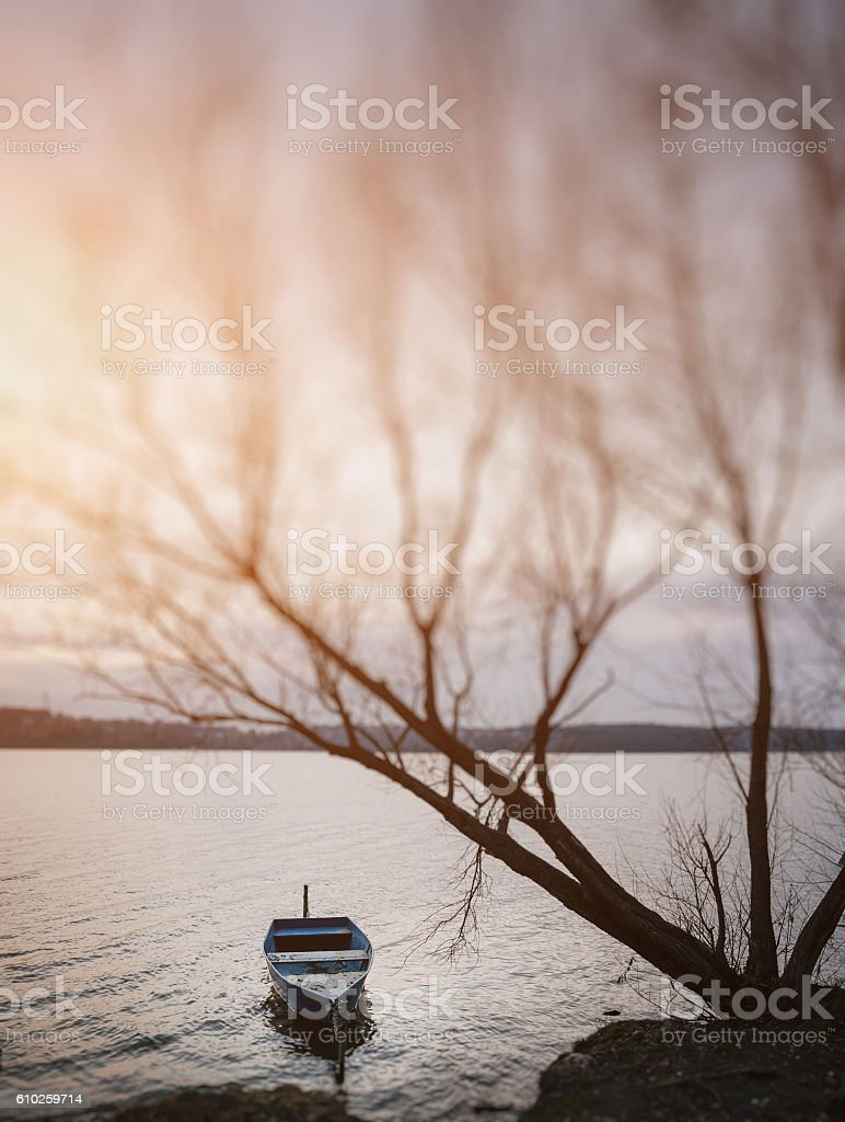 Moored boat on lake shore near tree branches stock photo