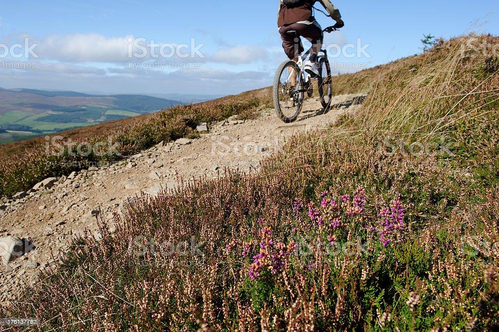 Moorland cycling stock photo
