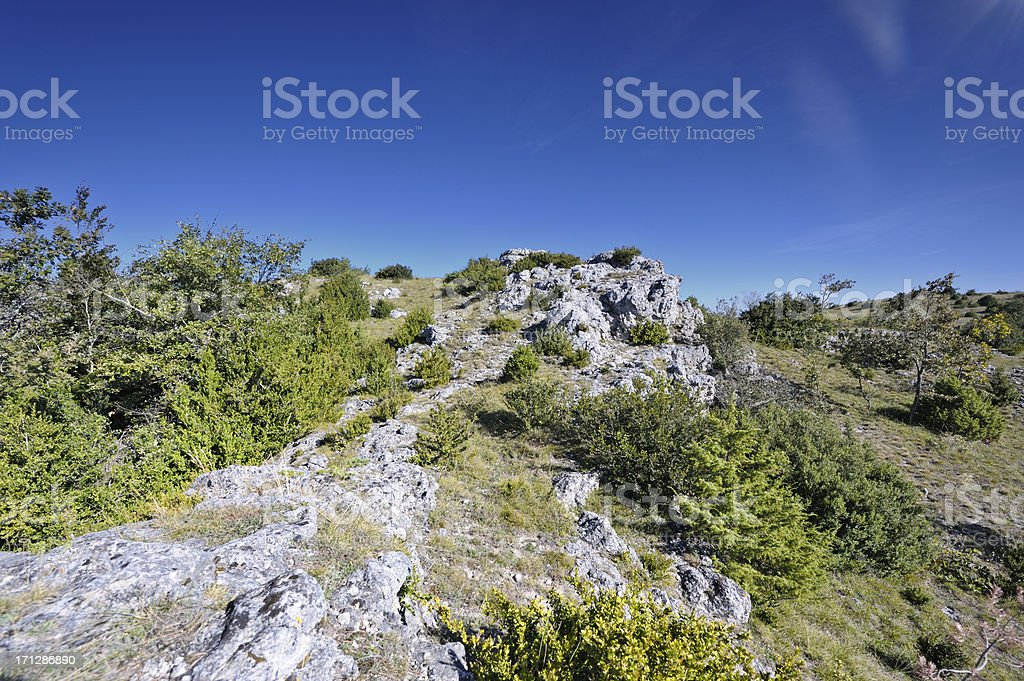 Moorland in the south of france royalty-free stock photo