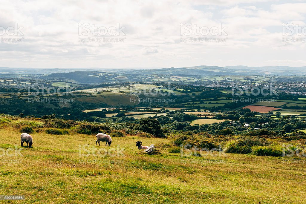 Moorland landscape around Tavistock in Dartmoor, Devon, England stock photo