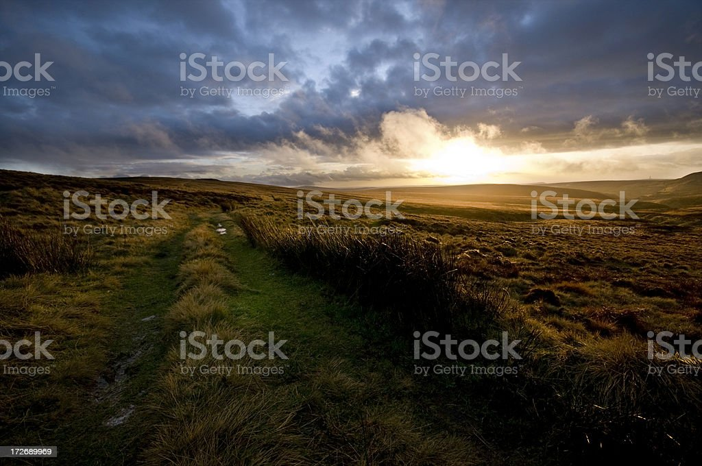 Moorland Path royalty-free stock photo
