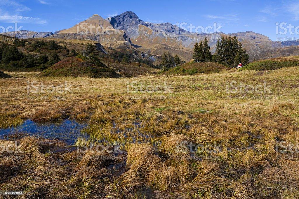 Moorlandschaft mit Schwarzhorn und Gemschiberg royalty-free stock photo