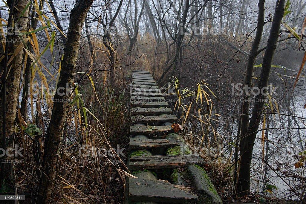 Moorweg stock photo