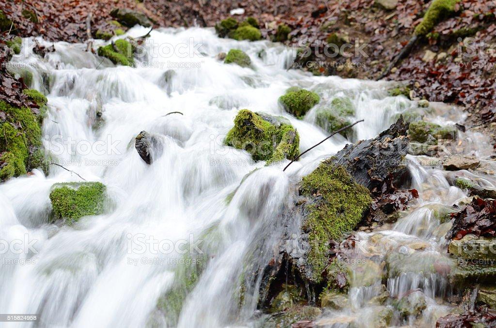 Moos im Wasser stock photo
