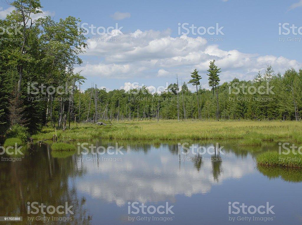 Moosehead reflections stock photo