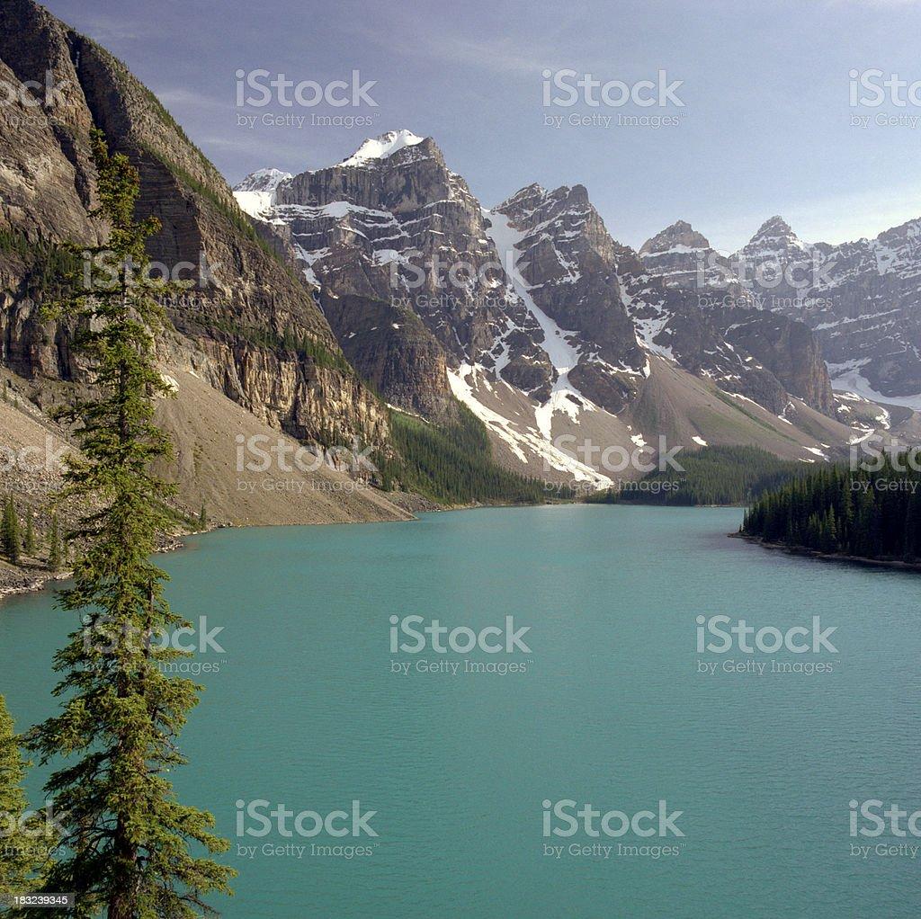 Moraine Lake and Tree royalty-free stock photo