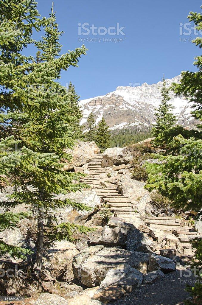 Moraine Lake Trail royalty-free stock photo