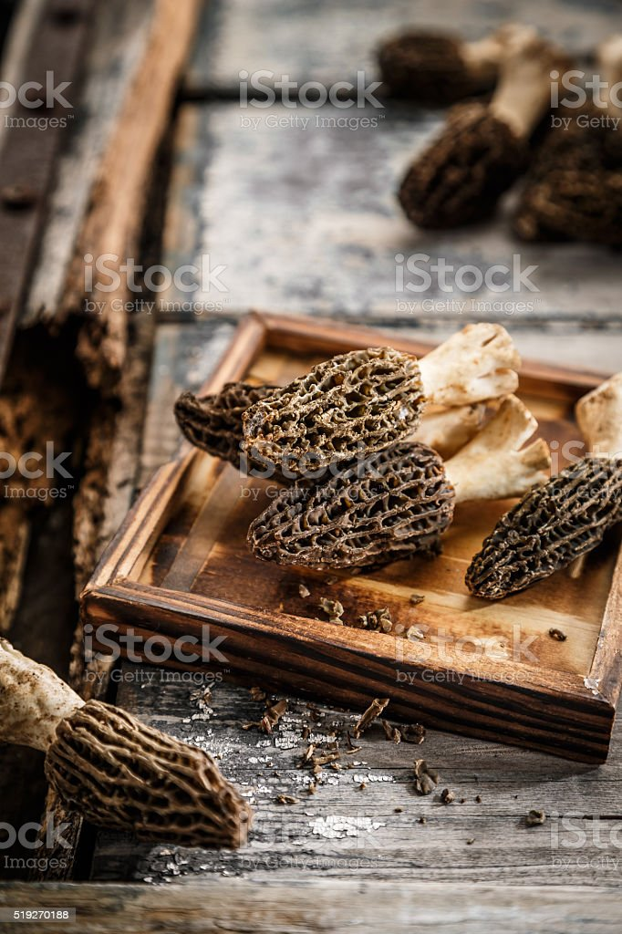 Morel Mushrooms on the table stock photo