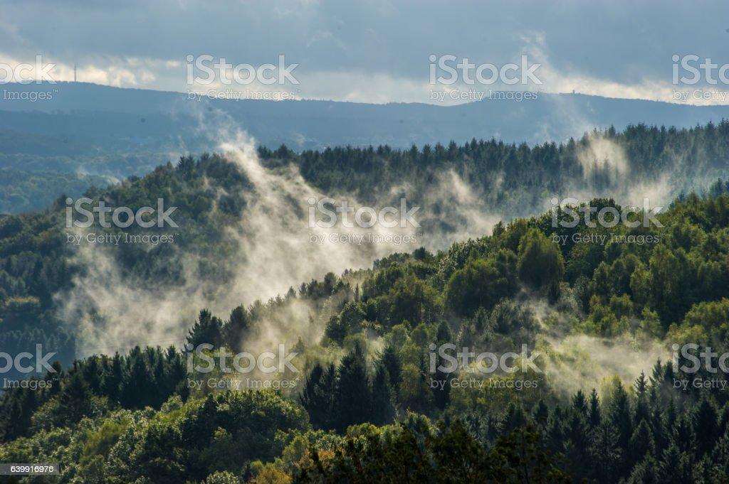 Morgennebel steigt auf stock photo