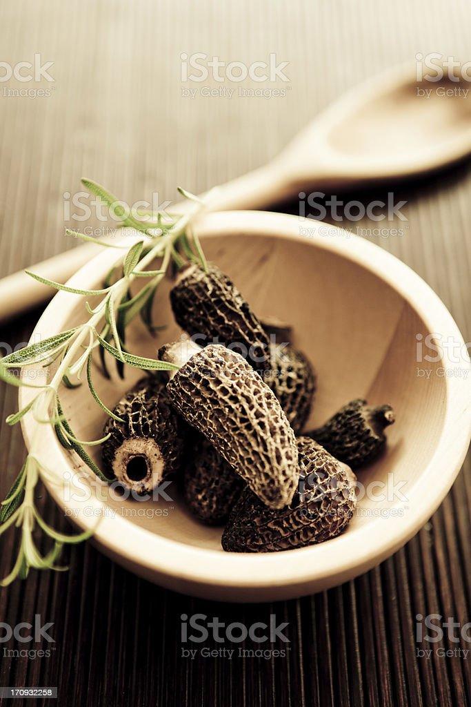 Morilles or Morel Mushrooms stock photo