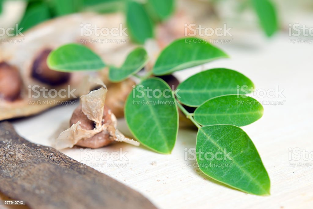 Moringa leaf and seed on wood background stock photo