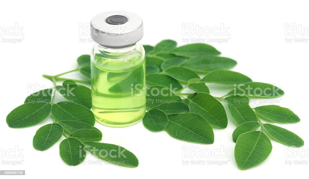Moringa leaves with extract in a vial stock photo