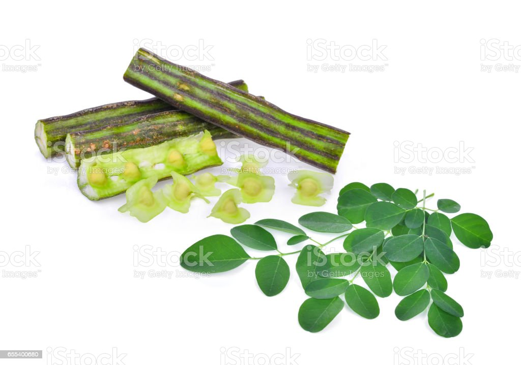 Moringa pod and leaves isolate on white background stock photo