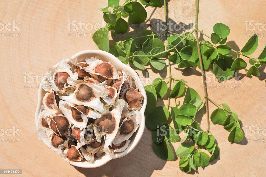 Moringa seeds with leaves stock photo