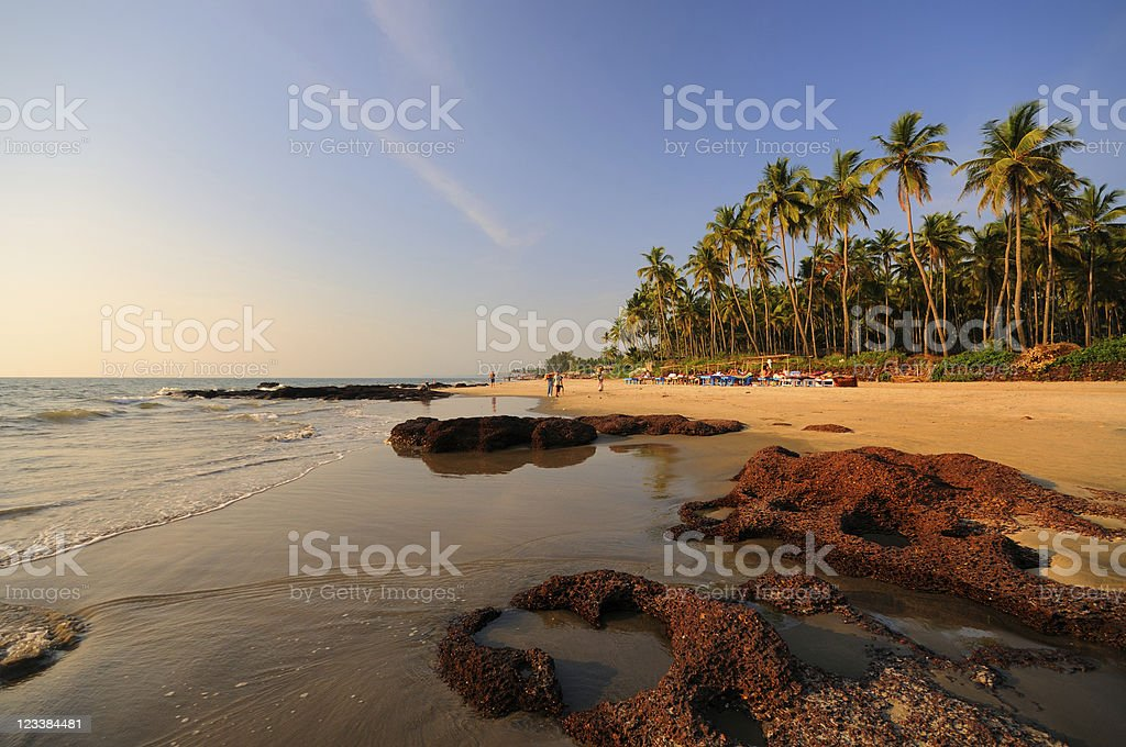 Morjim Beach, Goa, India stock photo