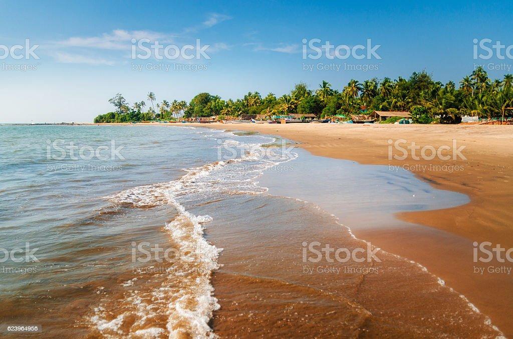 Morjim beach. Wooden fishing boats and palm trees, Goa, India стоковое фото