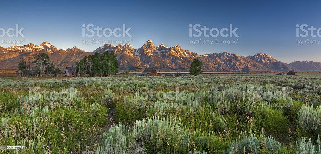 Mormon Row royalty-free stock photo