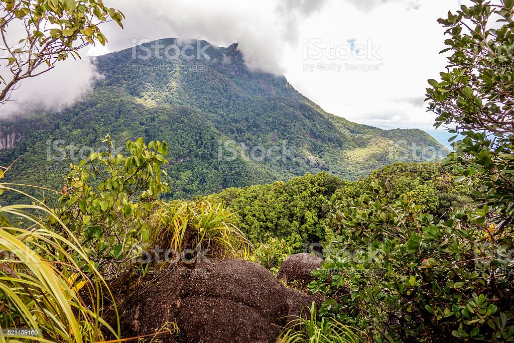 Morne Seychellois National Park - Mahe - Seychelles stock photo