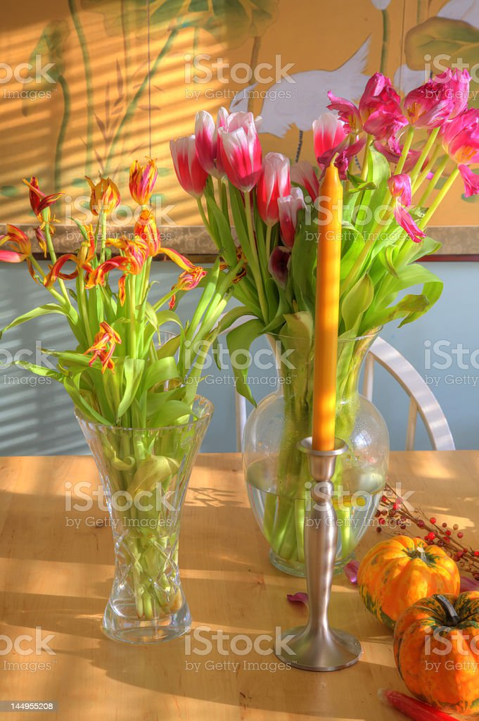 Morning After - HDR stock photo