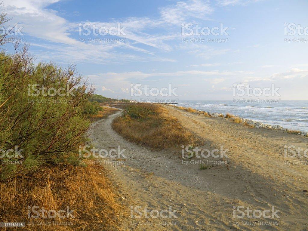 Morning at the beach royalty-free stock photo