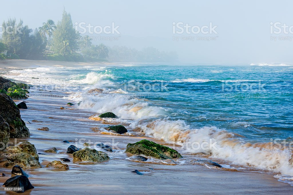 Morning at Turtle Beach of Oahu stock photo