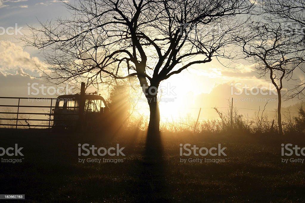 morning breaks royalty-free stock photo