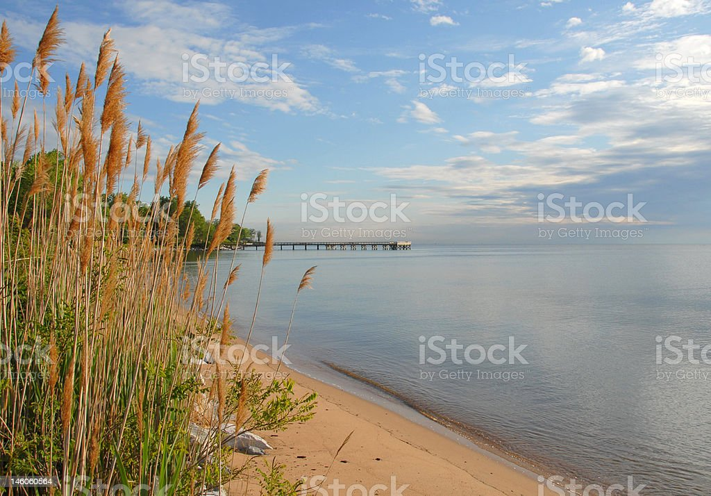 Morning by the Bay royalty-free stock photo