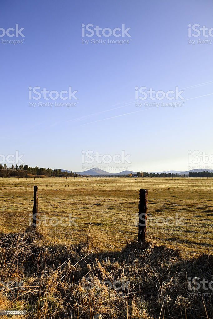 Morning Dawn Pasture on a Farm stock photo