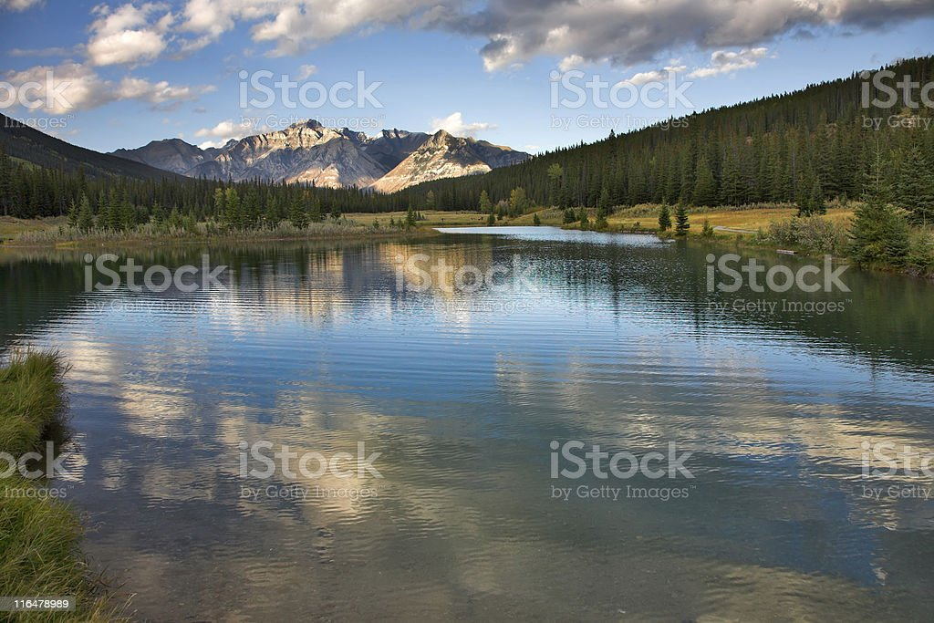 Morning easy breeze. royalty-free stock photo
